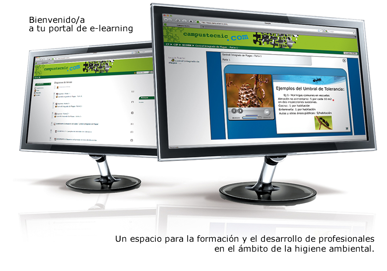 Bienvenido/a a tu portal e-learning